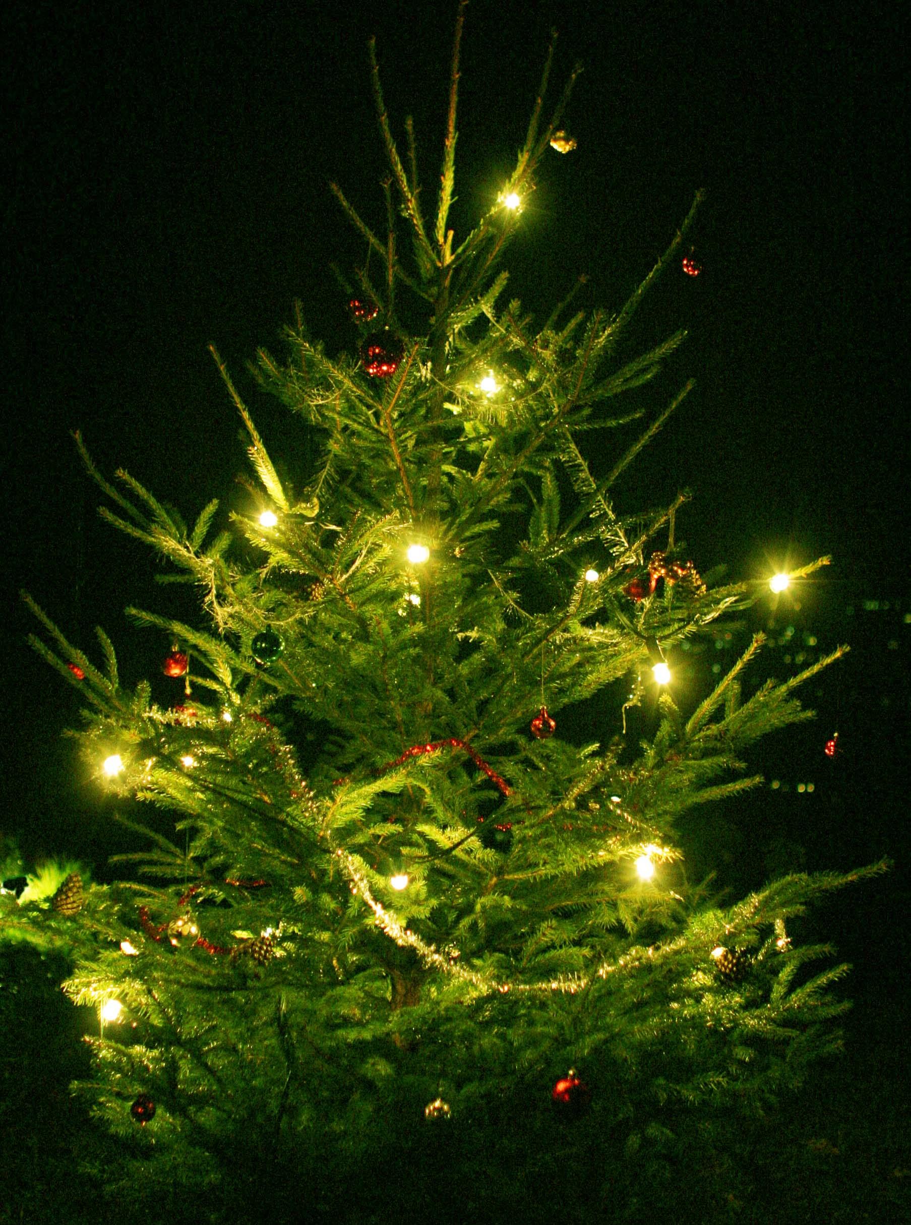 Albero di natale svedese diario nordico for Addobbi albero
