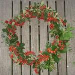 Julkrans från Medelhavet