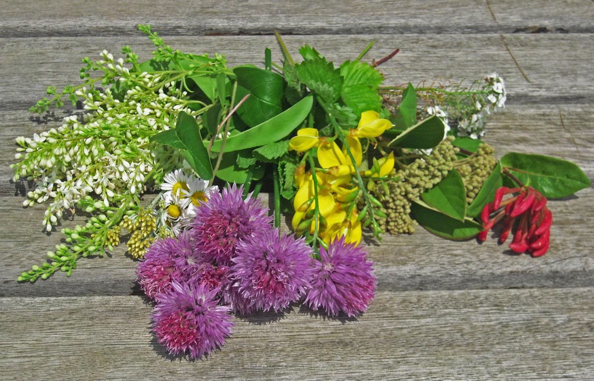 I fiori del quiz