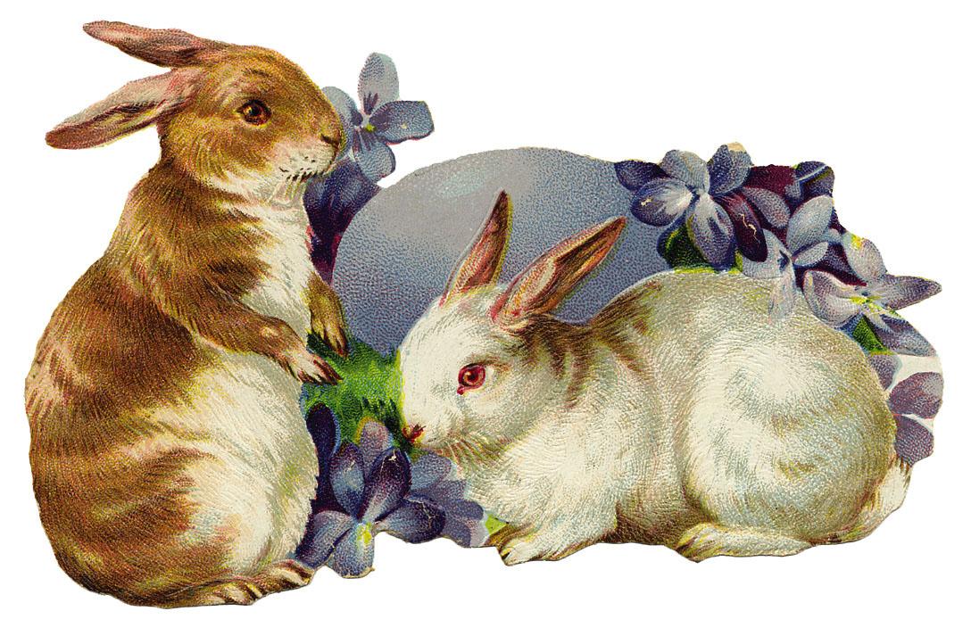 Le uova di pasqua e il coniglio png vettori psd e clipart per