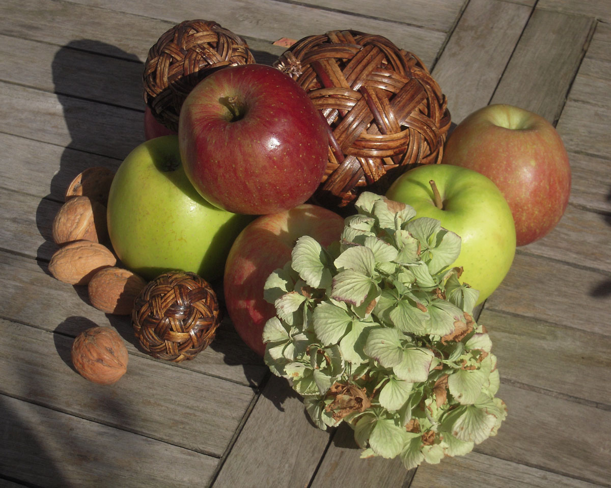 Äppelkaka - Mele e noci