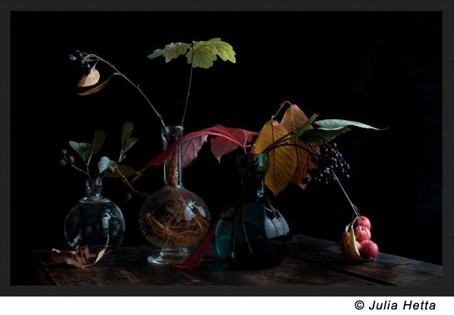 Julia Hetta - Still life 1