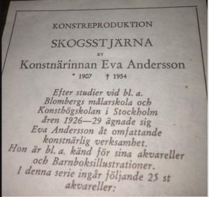 Eva Andersson - Indicazioni biografiche