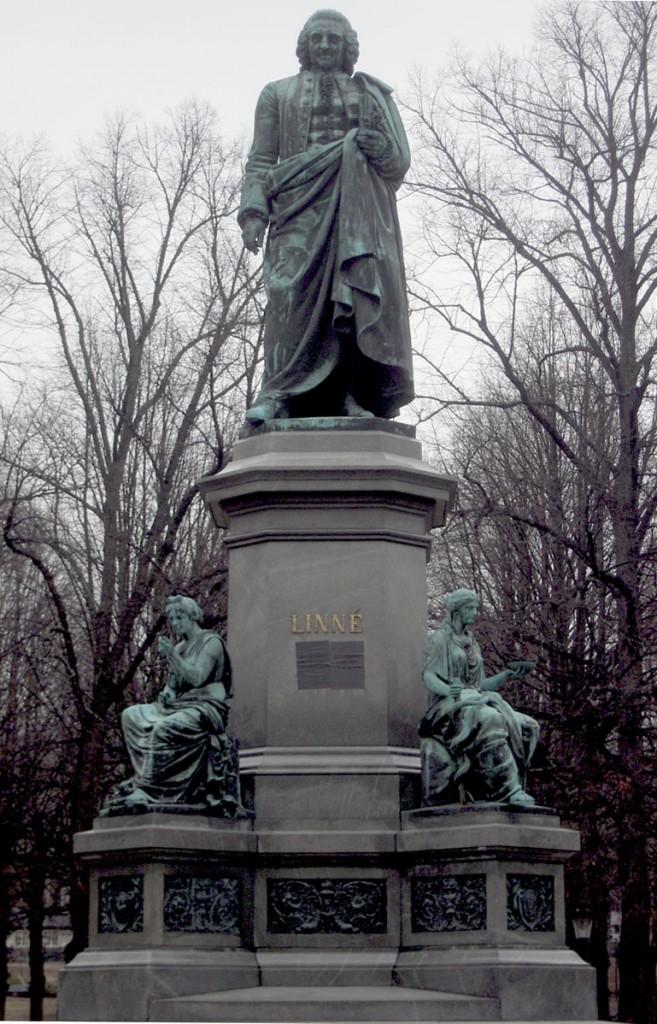 Linné - Statua a Humlegården (Stoccolma)