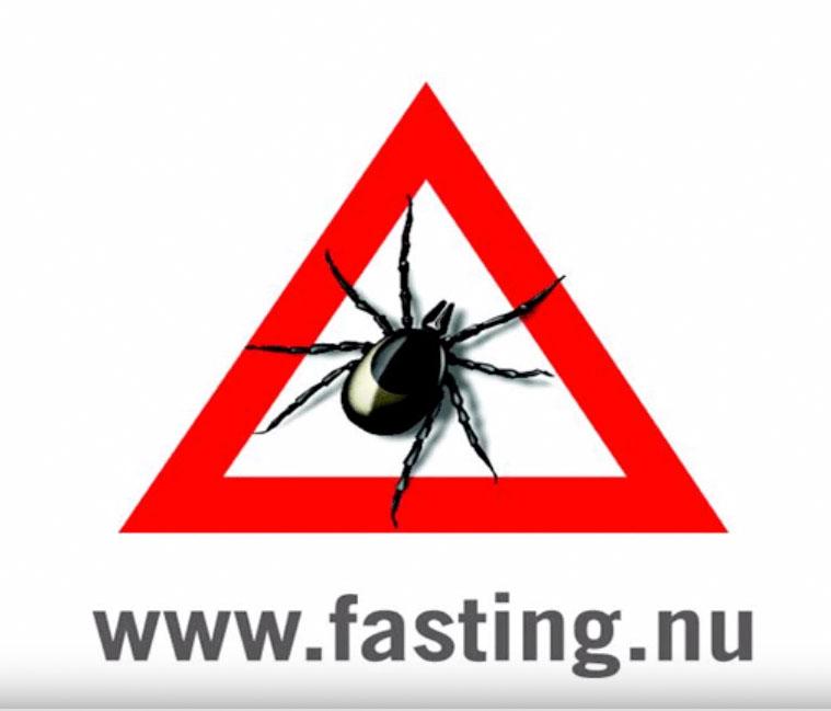 Zecche - fasting nu